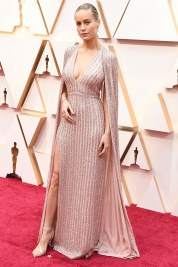 red-carpet-pink-oscars-2020-ss05